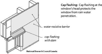 CapFlashDiagram window replacement specifications